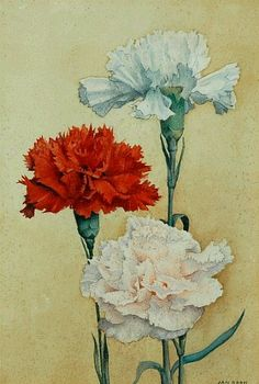 Jan Boon (Dutch, 1882 - 1975) - Carnations (20th century)....these are my favorite~favorite...there scent 'sends' me!!.dkw