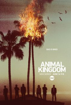 "Animal Kingdom (TNT - 06/14/16 - 9/8c) - a new series starring Ellen Barkin as Janine ""Smurf"" Cody as a Cali crime boss and mother of a group of henchmen, aka her sons, played by Shawn Hatosy, Ben Robson, Jake Weary, Scott Speedman and Finn Cole."