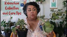 Kalanchoe Collection and Care Tips Balcony Garden, House Plants, Sassy, The Creator, Succulents, Gardening, Videos, Tips, Youtube