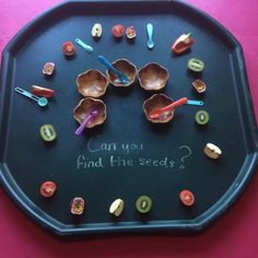 Spring Week 2 – flowers and sunshine – allbirdsareowls Tiny Seed Activities, Eyfs Activities, Nursery Activities, Spring Activities, Preschool Activities, Seeds Preschool, Tuff Spot, Play Based Learning, Project Based Learning