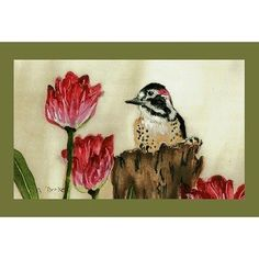 "Garden Woodpecker Door Mat Size: 30"" H x 50"" W by Betsy Drake Interiors. $68.00. DM243G Size: 30"" H x 50"" W Features: -Material: Polyester.-Pattern: Woodpecker.-Made of synthetic washable material.-Will stand up to years of wear with a non-slip rubber backing. Collection: -Garden collection."