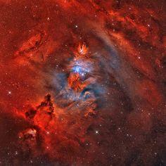 Constelacion Unicornio