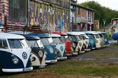 Volkswagen #VW Bus ☮ re-pinned by http://www.wfpblogs.com/author/southfloridah2o/ All Lined up #vwbus