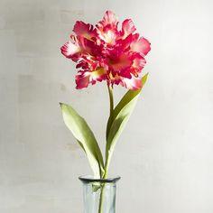 Faux Parrot Tulip Stem | Pier 1 Imports