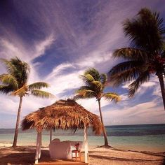 Old Bahama Bay Resort is a great place to get away from it all. Find out why it's one of our Featured luxury resorts. Bahamas Resorts, Luxury Resorts, Great Places, Trips, Beach, Water, Outdoor, Viajes, Gripe Water