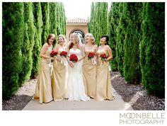 westin huntsville wedding pictures