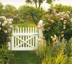 Martha's garden at Turkey Hill remains, to this day, one of my favourite gardens of all time. While I never had the priviledge of seeing th...