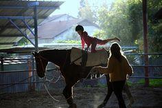 horse riding - רכיבה אמנותית
