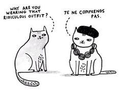 Parisian kitty