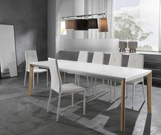 Main Thumb Dinning Table, Dining Bench, Dining Chairs, Branding Design, Modern Design, Lights, Furniture, Home Decor, Tables