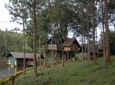 Gayathri Shetty and Namith Verma GORUKANA Eco Tourism Resort in BR Hills, Karnataka - Gorukana - B R Hills Karnataka
