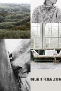 | greyish winter greens |