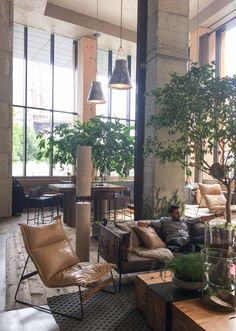 With Hotels In Central Park South Beach West Hollywood Near The Brooklyn Bridge 1 Offers An Eco Friendly Hotel Experience Where Nature Inspires