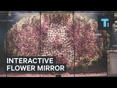 Interactive mirror made of 3,000 flowers responds to your movement - YouTube