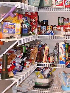 The parable of the cupboard and Genesis 1:29–30 - creation.com Before The Fall, Genesis 1, Bible Studies, Cupboard, Jelly Cupboard, Armoire, Cupboards, Credenza, Closet
