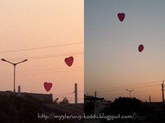 Makar Sankranti and Kite Flying ~ miss_teerious