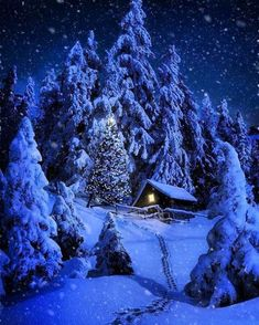 My house will look like this when winter is here! Yes, the long hike # .- My house will look like this when winter is here! Yes, the long hike too Winter Szenen, Winter Cabin, Winter Is Here, Winter Night, Snow Pictures, Snow Scenes, Christmas Scenes, Merry Christmas, Blue Christmas