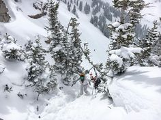 There's always fresh turns to be had. Sometimes you just gotta look at the end of the boot pack.