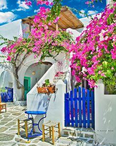 Beautiful Islands, Beautiful World, Beautiful Places, Greece Fashion, Paros Greece, Paros Island, Greek House, Greece Islands, Backyard Landscaping