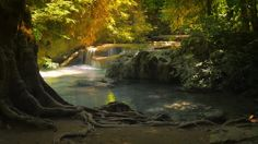 slider-tracking-video-shot-of-beautiful-tropical-environment-of-rain-forest-in-thailand-tranquil-background-of-small-waterfall-natural-pool-with-crystal-clear-water-and-old-big-tree_n2obwglux__M0007.jpg (640×360)