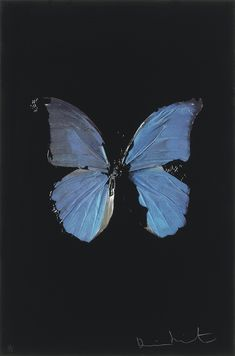 View The Soul on Jacobs Ladder by Damien Hirst on artnet. Browse upcoming and past auction lots by Damien Hirst. Blue Aesthetic, Aesthetic Vintage, Aesthetic Photo, Aesthetic Pictures, Bedroom Wall Collage, Photo Wall Collage, Picture Wall, Jacob's Ladder, Laura Lee