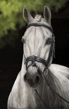 Commission: White Champion by Naia-Art.deviantart.com on @DeviantArt