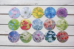 Geschenkanhänger Anhänger Blumen, Blüten, Pflanzen Fotogr... http://www.amazon.de/dp/B01C3507EI/ref=cm_sw_r_pi_dp_y34gxb1KK79Y7