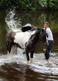 A member of the travelling community washes a horse in the river Eden