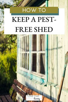 How to create and maintain an outdoor shed free from pests, bugs and insects all year round. Perfect ideas for maintaining and keeping your shed pest free, bug free. Outdoor Sheds, Outdoor Gardens, Contemporary Garden Rooms, Free Shed, All Year Round, She Sheds, Uk Homes, Bugs And Insects, Outdoor Living