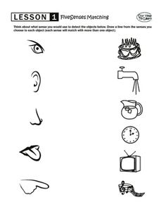 Five senses matching worksheet from ABOUT ME (activity book). Full five senses lesson with more worksheets, stickers, and activity ideas in ABOUT ME. preschool, kindergarten, home school Five Senses Kindergarten, English Worksheets For Kindergarten, Science Worksheets, Preschool Kindergarten, Senses Activities, Preschool Learning Activities, Five Senses Worksheet, Writing Outline, Learn Science