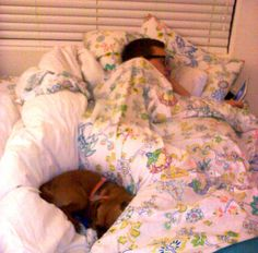 """He said, """"If we get a dog it will NEVER be allowed in the bed. Ever. Period. The end."""" ----   More about this photo:  The dog snores!"""