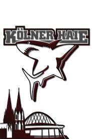 Bildergebnis für kölner haie logo