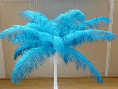 23-25 Ostrich Feathers  13 Different by OstrichFeathers4Sale