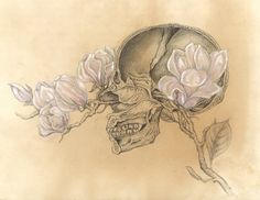 SALE Limited Edition HUMAN NATURE Poster Anatomy Series Number 1 11x14 Lustre Print Skull Magnolia Flowers Signed by the Artist