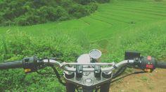 cornfield [th] cr.