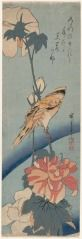 Hibiscus and Korean Nightengale (Fuyo ni korai uguisu) HIROSHIGE ANDÔ (JAPANESE, 1797–1858) 1853