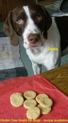 Gluten Free Rosemary Cheddar Dog Treats (frostingfran.blogspot.com)