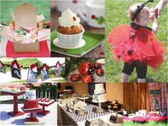 Halfway to Housewife: Avery's Ladybug Picnic Party: the inspiration