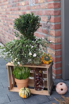 herbstdeko an der fensterbank 2013 autumn addicted pinterest blume. Black Bedroom Furniture Sets. Home Design Ideas