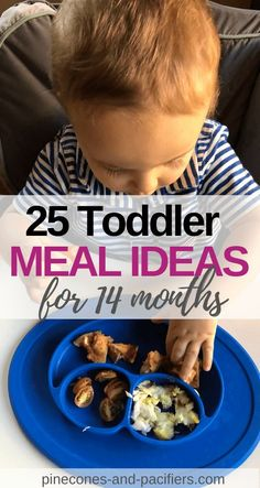Self-Feeding Ideas for months Toddler Meal Ideas 14 months. I'm showing everything my toddler eats at 14 months. Self-feeding ideas and food tips for young toddlers. Easy and quick meal prep ideas and self-feeding tools from an experienced mom. Healthy Lunches For Kids, Healthy Toddler Meals, Toddler Lunches, Kids Meals, Toddler Food, Toddler Dinners, Food Hacks, Food Tips, Quick Meals To Make