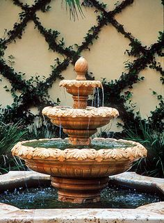 vines on wire trellis + tiered fountain
