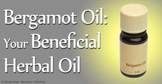 Bergamot oil's benefits as an insect repellent and massage oil are now well-known – here are more facts about its composition, uses, and how to use it safely. http://articles.mercola.com/herbal-oils/bergamot-oil.aspx