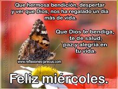 Feliz miércoles, que hermosa bendición, despertar