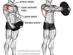 Weight plate front raise An isolation and push exercise Target muscle Anterior Deltoid Synergistic muscles Lateral Deltoid Clavicular Pectoralis Major Serratus Anterior M. Fitness Workouts, At Home Workouts, Fitness Motivation, Exercise Workouts, Training Exercises, Exercise Routines, Exercise Motivation, Elevación Frontal, Best Shoulder Workout