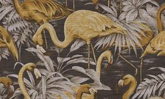 31540 Flamingo Wallpaper by Arte-WallpaperSales Washable Wallpaper, Vinyl Wallpaper, Wallpaper 2016, Arte Wallcovering, Paradise Flowers, Flamingo Wallpaper, Palm Wallpaper, Japanese Countryside, Exotic Beaches