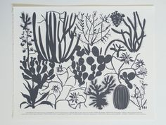 Large Print -  10 Cactus Screen Print -Charcoal Gray by Banquet on Etsy https://www.etsy.com/listing/106985867/large-print-10-cactus-screen-print