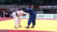Fantastic judo gifs collection showing fantastic judo stuff of the greatest judo techniques on tatami mat and elsewhere including parliament