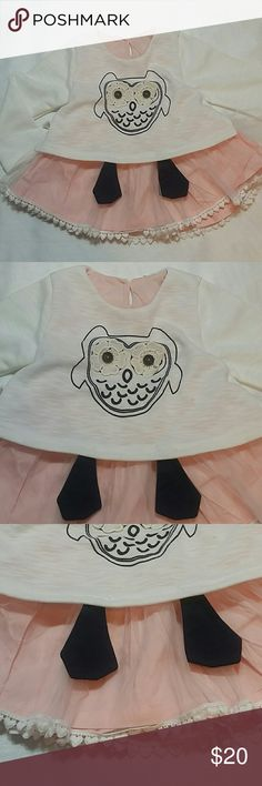 NWOT Pink Owl Dress Adorable pink and white dress with a super cute owl design.  The whit part is attached to the inner pink dress.  White tull at the bottom.  Very cute item  This item is brand new and never used Dresses