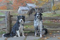 Sydney & I at Mabry Mill, VA, Blue Ridge Parkway this Fall