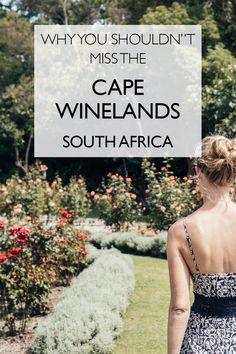 Why You Shouldn't Miss The Cape Winelands | Cape Town | Stellenbosch | Franschoek